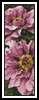 Pink Petals Bookmark - Cross Stitch Chart
