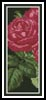 Pink Roses 4 Bookmark - Cross Stitch Chart