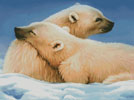 Polar Bears - Cross Stitch Chart