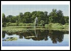 Pond - Cross Stitch Chart