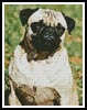 Pug - Cross Stitch Chart