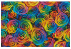 Rainbow Roses - Cross Stitch Chart