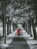 Red Coat - Cross Stitch Chart