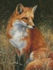 Red Fox Painting - Cross Stitch Chart