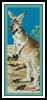 Red Kangaroo Bookmark - Cross Stitch Chart