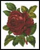 Red Rose - Cross Stitch Chart
