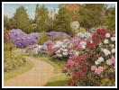 The Rhododendron Walk - Cross Stitch Chart
