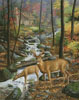 Room with a View - Cross Stitch Chart