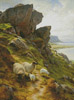 Rugged Pasture - Cross Stitch Chart