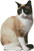 Snowshoe Cat 2 - Cross Stitch Chart