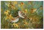 Sparrows in the Field - Cross Stitch Chart