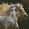 Spirit Horse - Cross Stitch Chart
