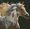 Spirit Horse (No Background) - Cross Stitch Chart