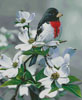 Springtime Grosbeak - Cross Stitch Chart