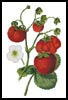 Strawberries - Cross Stitch Chart