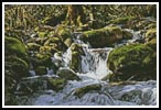 Stream - Cross Stitch Chart