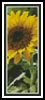 Sunflower Bookmark - Cross Stitch Chart