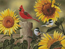 Sunflowers and Songbirds - Cross Stitch Chart