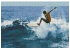 Surfer - Cross Stitch Chart
