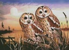 Tawny Owls - Cross Stitch Chart