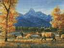 Teton Range - Cross Stitch Chart