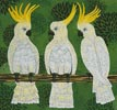 Three Cockatoos - Cross Stitch Chart