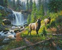 Thunder River - Cross Stitch Chart