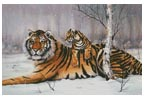 Tiger and Cub - Cross Stitch Chart