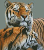 Tigers - (Facebook Group) Cross Stitch Chart