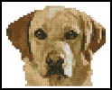 Tiny Golden Labrador - Cross Stitch Chart