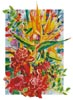 Torch Ginger and Bird of Paradise - Cross Stitch Chart