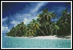 Tropical Island - Cross Stitch Chart