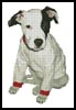 T-Shirt Puppy - Cross Stitch Chart