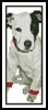 T-Shirt Puppy Bookmark - Cross Stitch Chart