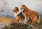Two Collies Above a Lake - Cross Stitch Chart