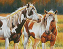 Two Paints - Cross Stitch Chart