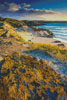 Evening Light on Uig Bay - Cross Stitch Chart