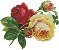 Victorian Roses 2 - Cross Stitch Chart