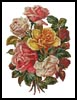Victorian Roses Bouquet - Cross Stitch Chart