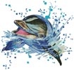 Watercolour Dolphin - Cross Stitch Chart