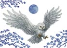 White Owl (No Background) - Cross Stitch Chart