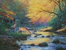 Wild America - Cross Stitch Chart