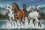 Wild Horses - Cross Stitch Chart