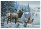 Winter Elk - Cross Stitch Chart