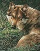 Wolf Painting - Cross Stitch Chart