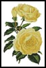 Yellow Roses - Cross Stitch Chart