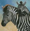 Zebra and Foal - Cross Stitch Chart